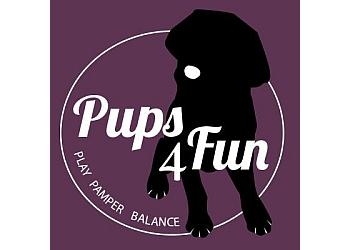 Pups4Fun