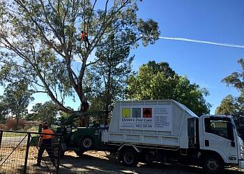 Quinn's Tree Care