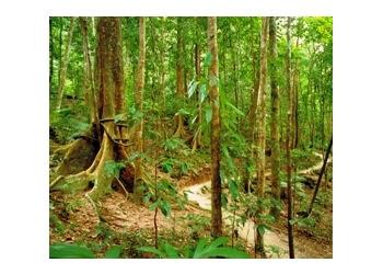 Smithfield Regional Park Trail