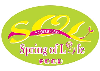 Spring of life food