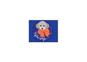 Stylin' Dogs