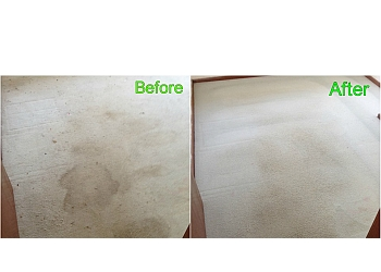 3 Best Carpet Cleaning Service In Maitland Nsw Top