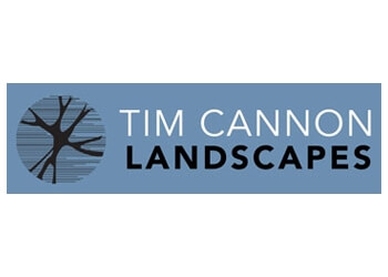 Tim Cannon Landscapes