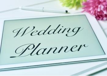 Tinkerbell Weddings