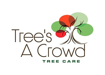 Trees A Crowd Tree Care