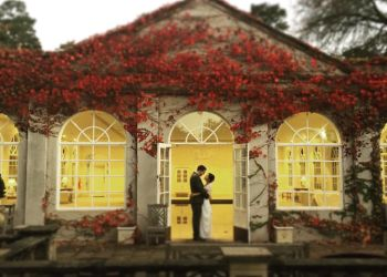 Way Up High Films
