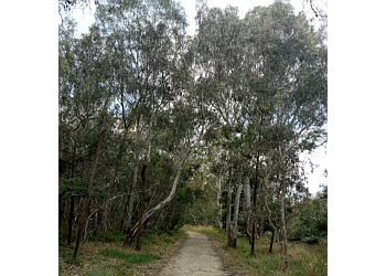 Yarra Bend Park Trail